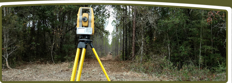 Clearing & surveying property lines