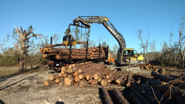 hauling storm damaged trees, tree removal, hurricane clean up