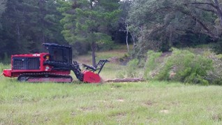 forestry mulching, tree removal, brush clearing, stump grinding fire breaks, fire lanes, prevent forest fires